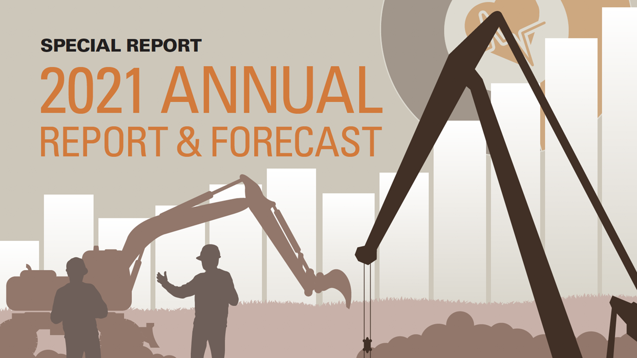 Annual Report and Forecast